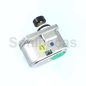 SERVOMOTOR NATURAL VAILLANT